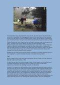 Bericht von Conny Büttner über die 4-tägige - ig samojede - Seite 5