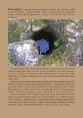 Kamen i voda – kraški izvori u Rašanjskom polju - Dragodid - Page 7