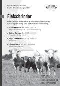 Fleischrinder - Rinderzucht Mecklenburg Vorpommern - Seite 5
