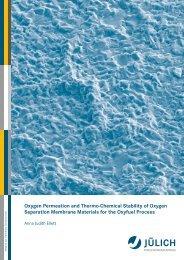 thesis final july 19 - JUWEL - Forschungszentrum Jülich