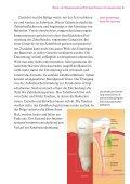 Zähne und Allgemeingesundheit Wechselbeziehungen - Bayerische ... - Seite 5