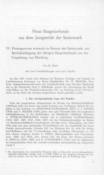 Neue Säugetierfunde aus dem Jungtertiär der Steiermark
