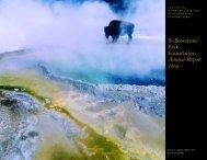 Yellowstone Park Foundation Annual Report 2009 - Convio