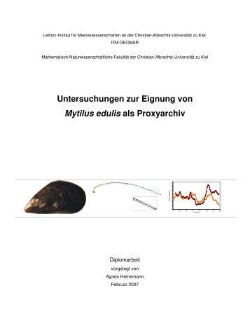 Untersuchungen zur Eignung von Mytilus edulis als Proxyarchiv