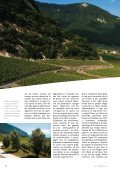 Vignoble - STLDESIGN - Page 6
