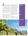 van het planten tot plukken - Domaine de Beudon - Page 3