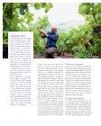 van het planten tot plukken - Domaine de Beudon - Page 4