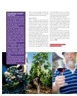 van het planten tot plukken - Domaine de Beudon - Page 6