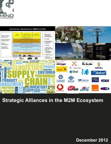 Brochure - Mind Commerce