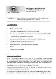 Protokoll GV 2010 - Ziknet