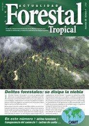 Delitos forestales - ITTO