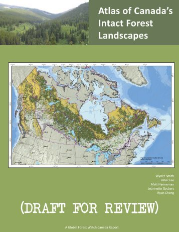 (DRAFT FOR REVIEW) - Global Forest Watch Canada