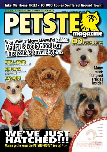 """The """"in-thing"""" - Petster Magazine!"""