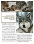 Alpha Male - Living With Wolves - Page 4