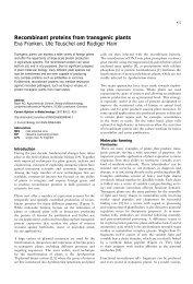 Recombinant proteins from transgenic plants Eva Franken ... - UFV