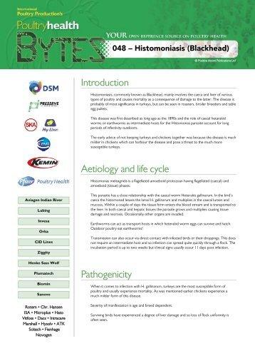 Download - Positive Action Publications Ltd