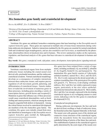 Msx homeobox gene family and craniofacial ... - Cell Research
