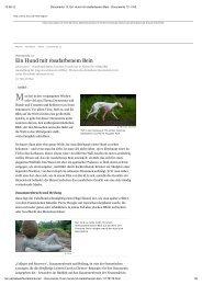 Ein Hund mit rosafarbenem Bein - Jan Frontzek Kulturmanagement