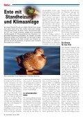 Ausgabe lesen - Rheinkiesel - Seite 7