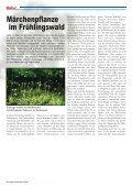 Schmale Ausbeute - Rheinkiesel - Seite 6