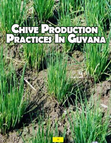 Chive - Guyana Marketing Corporation