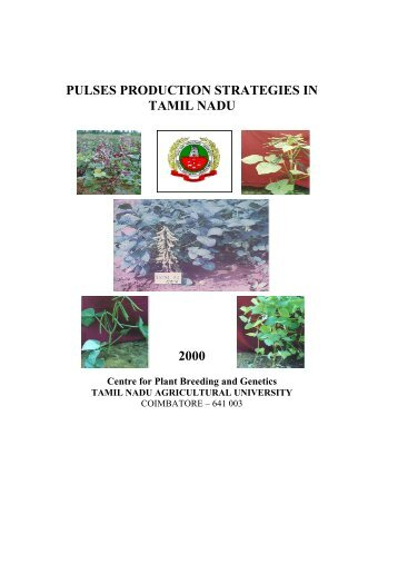 Pulses Production Strategies in Tamil Nadu - TNAU