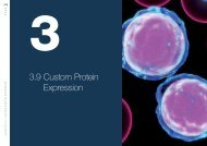 Custom protein expression service - Eurogentec