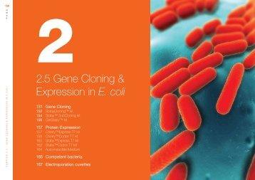 2.5 Gene Cloning & Expression in E. coli - Eurogentec