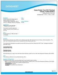Herpes Simplex Virus (HSV) Polyclonal Antibody ... - Eurogentec