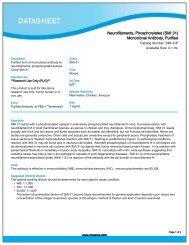 Neurofilaments, Phosphorylated (SMI 31) Monoclonal ...  - Eurogentec