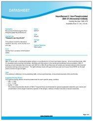 (SMI 37) Monoclonal Antibody - Eurogentec