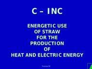 Presentation of C-INC Technology