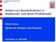 Anbau von Sonderkulturen in Südhessen und deren Problematik