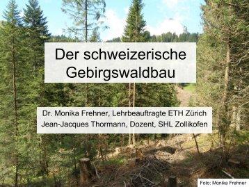 pdf, 8.0MB - ETH Zürich