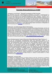 Newsletter Wirtschaftsförderung xx/2008 - Titisee-Neustadt