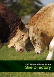 Sire Directory - Irish Simmental Cattle Society
