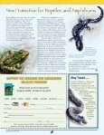 Piping Plovers - New Hampshire Fish and Game Department - Page 2