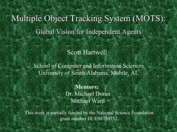 Multiple Object Tracking System - School of Computer and ...