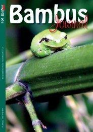 Bambus - Forum