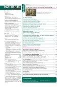 Bambus - Forum - Seite 2