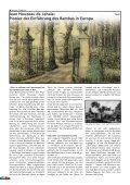 Bambus - Forum - Seite 4