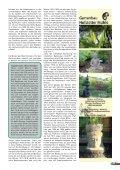Bambus - Forum - Seite 7
