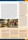Das Dschungelbuch - Page 7