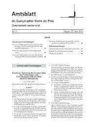 Nr. 5 Speyer, 22. Juni 2011 - Evangelische Kirche der Pfalz