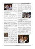 Gemeindebrief der Ev. - luth. Südstadtgemeinden Lukas - Luther ... - Seite 7