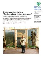 Buchenwälder - unser Naturerbe - Nationalpark Steigerwald
