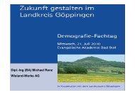 Dipl.-Ing (BA) Michael Renz Wieland-Werke AG