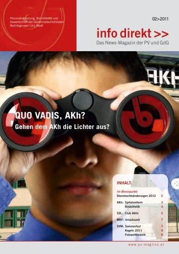 InfoDirekt 2011_2