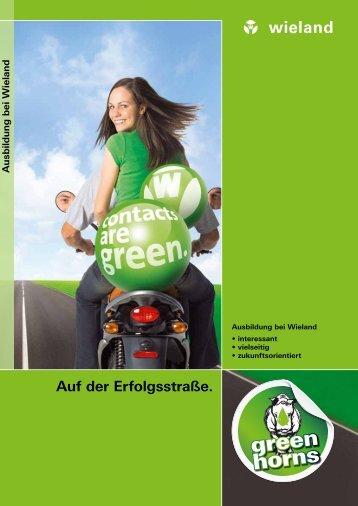 Ausbildung Broschüre - Wieland Electric