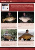 Mistral Baits - Page 5